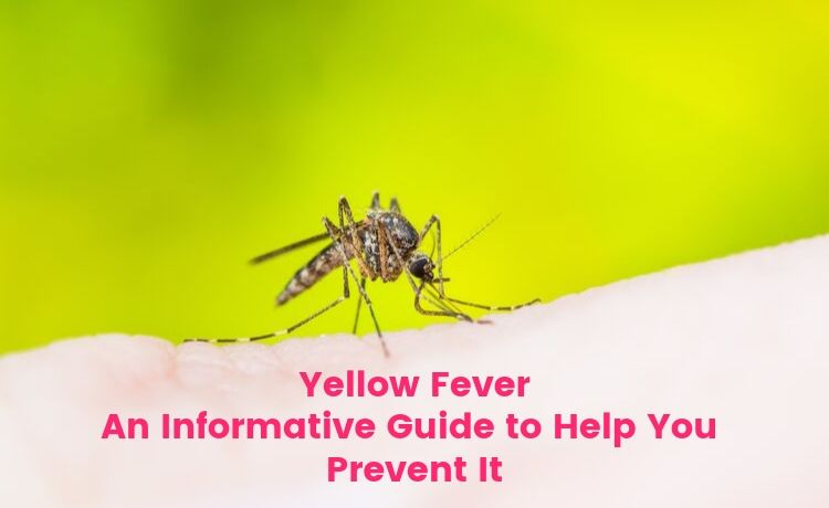 Yellow Fever Symptoms, Diagnosis and Treatment