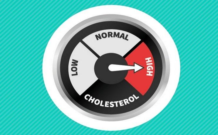 understanding high cholesterol levels